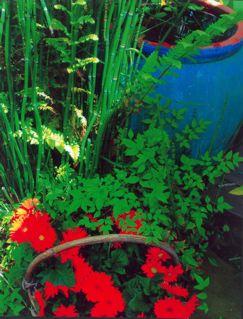 BlueFishPot.jpg