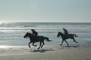 beach-riding